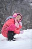 Vinter med ungar royaltyfri foto