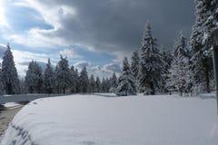 Vinter nytt år Arkivfoton