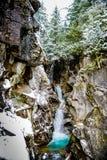 Vinter och snölandskap på monteringen Rainier National Park, paradis royaltyfria bilder