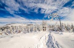 Vinter på Beskidy berg Arkivbild