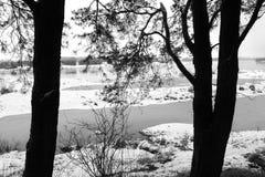 Vinter på felet royaltyfria bilder