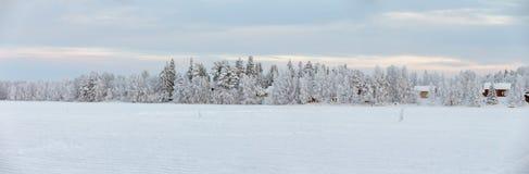 Vinter på Lapland Arkivbilder