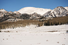 Vinter på pikmaximumet Arkivfoton