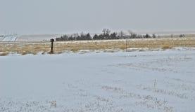 Vinter på prärien Arkivbilder