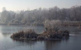 Vinter på sjön Arkivfoto