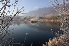 Vinter på sjön Arkivbild
