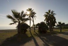 Vinter på stranden Costa del Sol Malaga Royaltyfri Foto