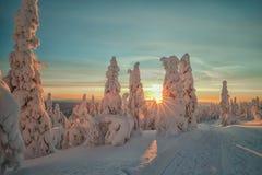 Vinter på Lapland Arkivfoton