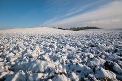 Vinter plogat fält, den avlägsna skogen Royaltyfri Bild