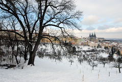 Vinter Prague Arkivfoton