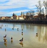 Vinter Prague Arkivbilder