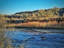 Vinter sceniska Arkansas River i sydliga Colorado Royaltyfri Fotografi