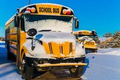 Vinter Schoolbuses Arkivbild