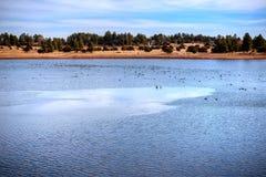 Vinter sjö Arkivfoto