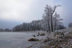 Vinter sjö Wigry Royaltyfria Bilder