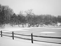 Vinter sjölandskap Royaltyfri Bild