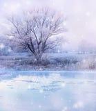 Vinter sjö Arkivbild
