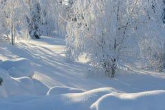 Vinter snow snowdrifts Fotografering för Bildbyråer