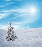 Vinter snowfall Royaltyfria Bilder
