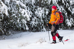 Vinter som fotvandrar i bergen Arkivfoto