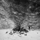 Vinter som fotvandrar i svartvitt Royaltyfri Fotografi