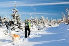 Vinter som fotvandrar med hunden Fotografering för Bildbyråer