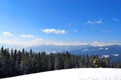 Vinter som klättrar och skidar Sund livsstil, turism, affärsföretag och sport Panorama av Carpathian berg från överkant royaltyfri fotografi