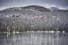 Vinter som paddleboarding i bergen royaltyfri bild