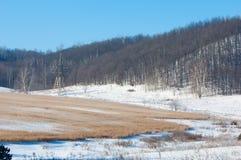 Vinter vinter-tidvatten, vinter-Time Fotografering för Bildbyråer