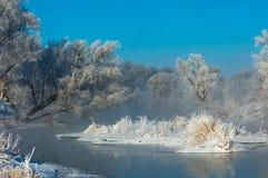 Vinter vinter-tidvatten, vinter-Time Royaltyfri Fotografi