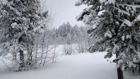 Vinter utomhus i mitt liv Arkivfoto