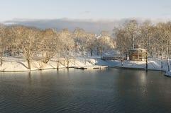 Vinter vid floden Arkivfoto