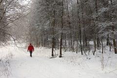 Vinter - Yorkshire - England Arkivbild