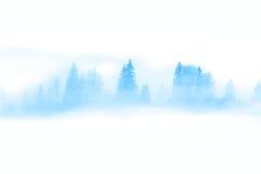 Vinterabstrakt begrepplandskap - lösa träd i den dimmiga dimman Royaltyfri Foto