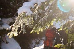 Vinteraffärsföretag Vandring i skogen Carpathians ukraine arkivbild