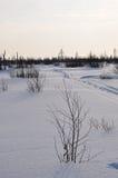 Vinterafton och frostigt landskap från nord Royaltyfria Foton