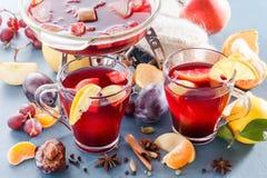 Vinteralkoholdrycker - funderat vin, stansmaskin, toddy Exponeringsglas skorrar med funderat vin varm tea för frukt Kryddor frukt Royaltyfri Foto