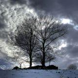Vinteranstrykning Fotografering för Bildbyråer