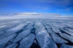 Vinterarktisk Vitt snöig berg, blå glaciär Svalbard, Norge Is i havet Isberg i nordpolen bluen clouds skywhite Arkivbild