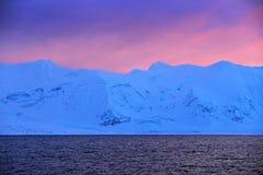 Vinterarktisk Vitt snöig berg, blå glaciär Svalbard, Norge Is i havet Isbergskymning i nordpolen Rosa färgen fördunklar med Royaltyfri Bild