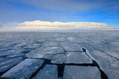 Vinterarktisk Vitt snöig berg, blå glaciär Svalbard, Norge Is i havet Isbergskymning i nordpolen Härlig landsc Royaltyfri Foto