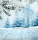 Vinterbakgrund arkivfoto