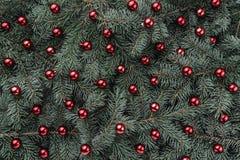 Vinterbakgrund av granfilialer Smyckat med röda struntsaker klaus santa för frost för påsekortjul sky Top beskådar Xmas-lyckönska royaltyfri foto