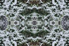 Vinterbakgrund förgrena sig i snön close upp stock illustrationer