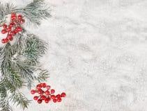 Vinterbakgrund - snö, gran, tranbär Royaltyfria Bilder