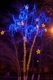 Vinterbelysning i en parkera Royaltyfri Fotografi