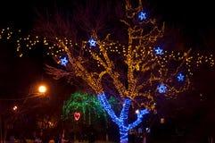 Vinterbelysning i en parkera Fotografering för Bildbyråer