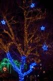Vinterbelysning i en parkera Royaltyfri Foto