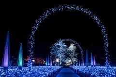 Vinterbelysning i Japan Royaltyfria Foton