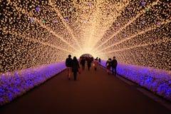 Vinterbelysningfestival i Nogoya, Japan Royaltyfria Bilder